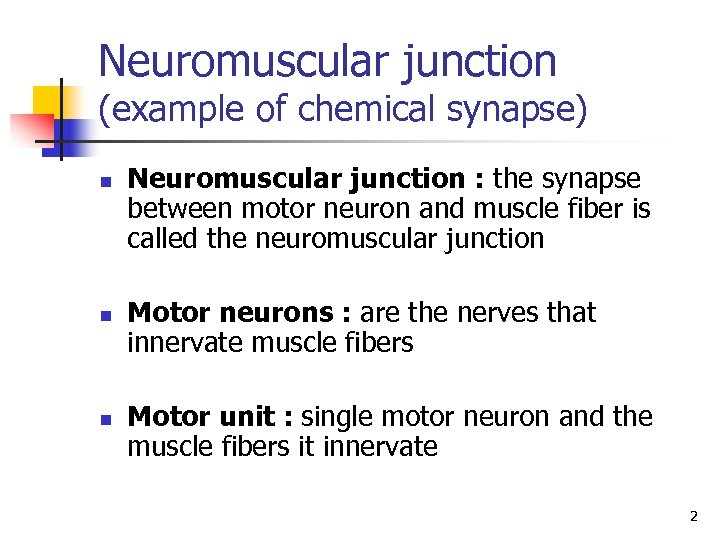 Neuromuscular junction (example of chemical synapse) n n n Neuromuscular junction : the synapse