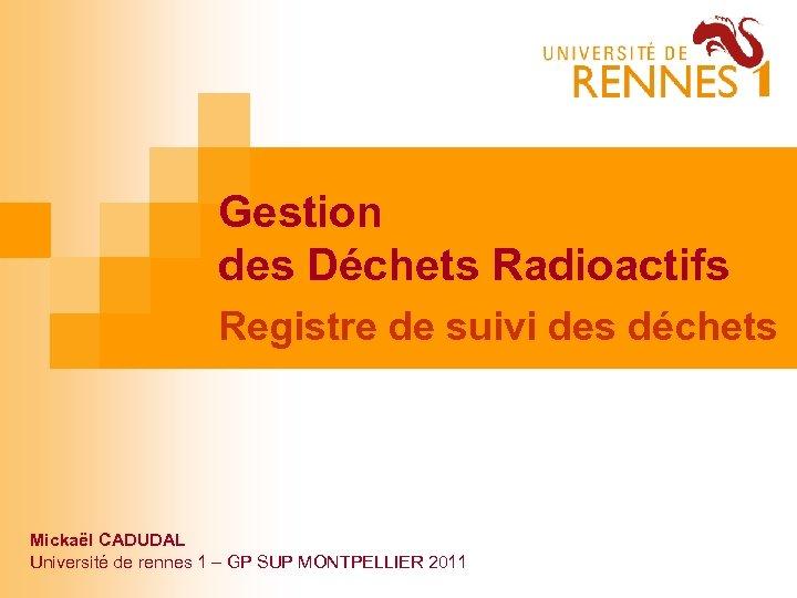 Gestion des Déchets Radioactifs Registre de suivi des déchets Mickaël CADUDAL Université de rennes