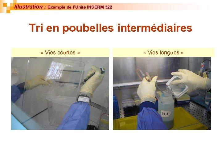 Illustration : Exemple de l'Unité INSERM 522 Tri en poubelles intermédiaires « Vies courtes