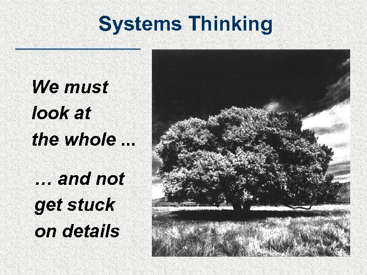 Systems Thinking We must look at the whole. . . … and not get