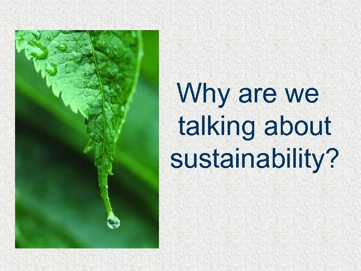 Why are we talking about sustainability?