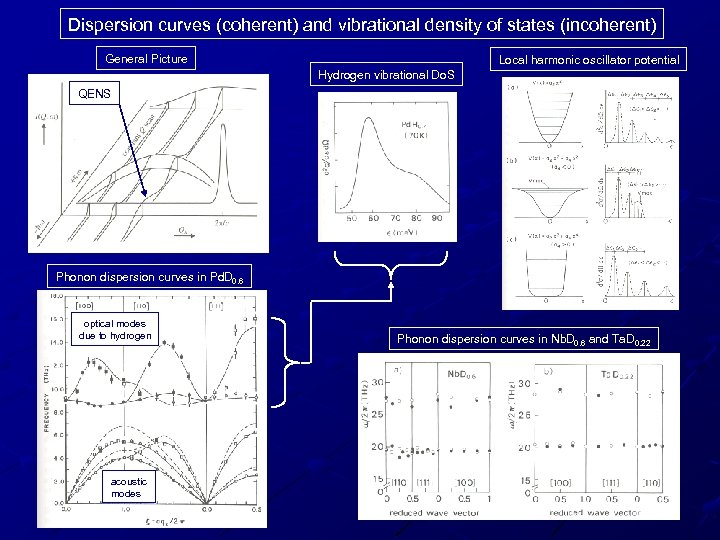 Dispersion curves (coherent) and vibrational density of states (incoherent) General Picture Local harmonic oscillator