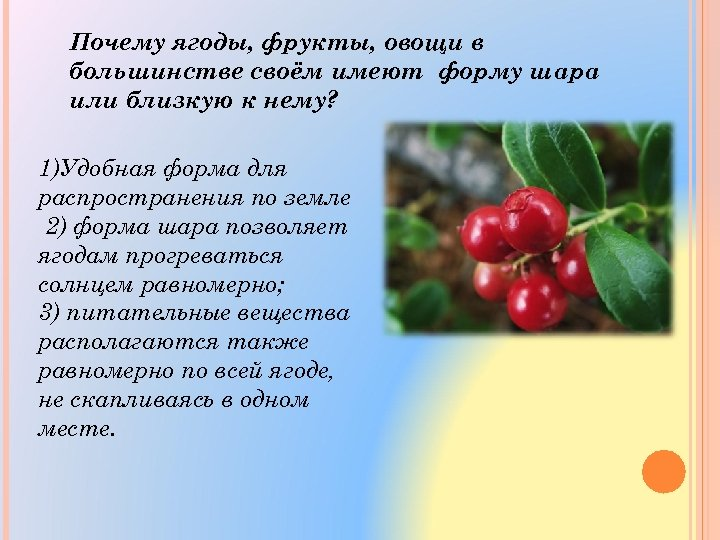 Почему ягоды, фрукты, овощи в большинстве своём имеют форму шара или близкую к нему?