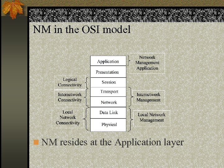 NM in the OSI model n NM resides at the Application layer