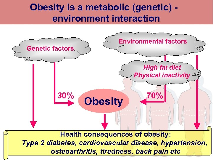 Obesity is a metabolic (genetic) - environment interaction Genetic factors Environmental factors High fat