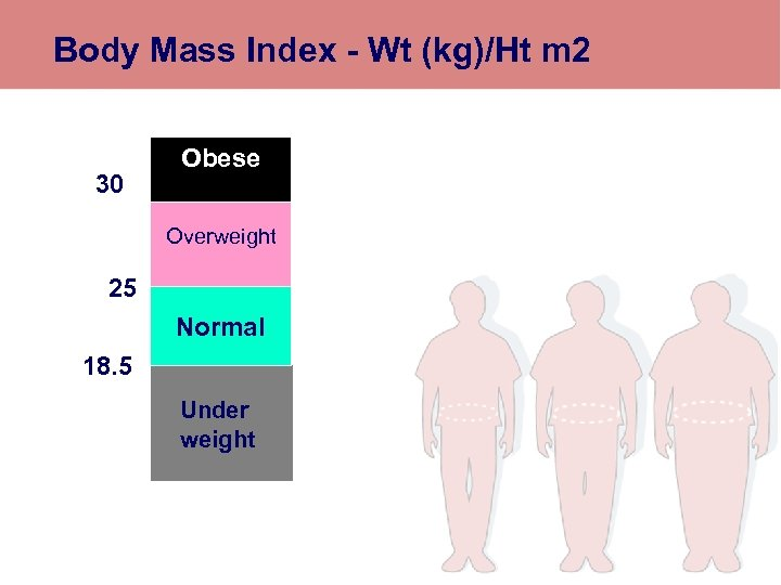 Body Mass Index - Wt (kg)/Ht m 2 30 Obese Overweight 25 Normal 18.