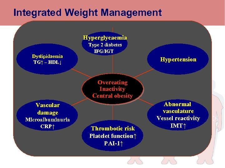 Integrated Weight Management Hyperglycaemia Dyslipidaemia TG↑ – HDL↓ Type 2 diabetes IFG/IGT Weight maintenance