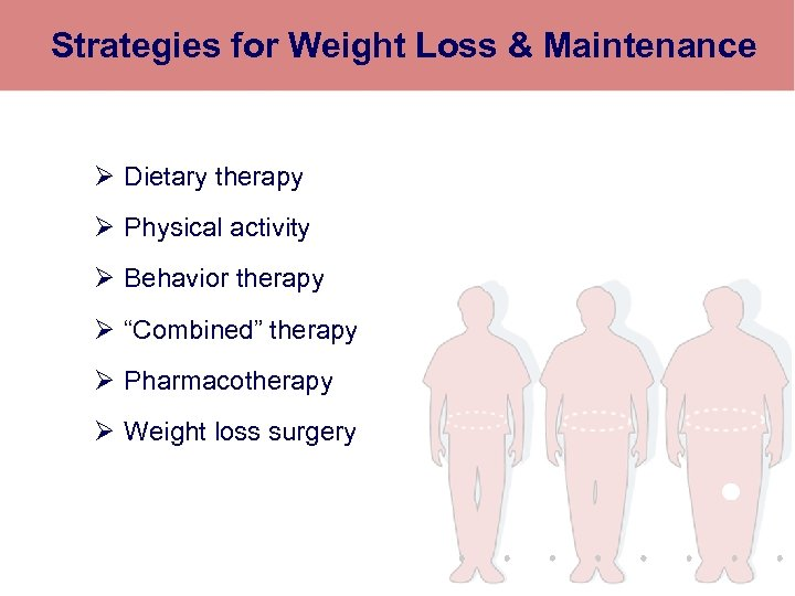 Strategies for Weight Loss & Maintenance Ø Dietary therapy Ø Physical activity Ø Behavior