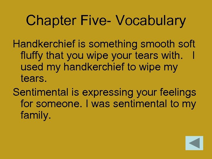 Chapter Five- Vocabulary Handkerchief is something smooth soft fluffy that you wipe your tears
