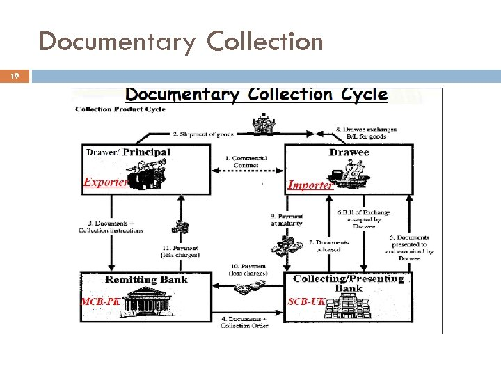 Documentary Collection 19