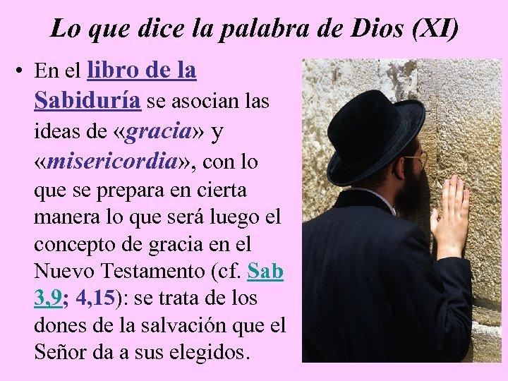 Lo que dice la palabra de Dios (XI) • En el libro de la