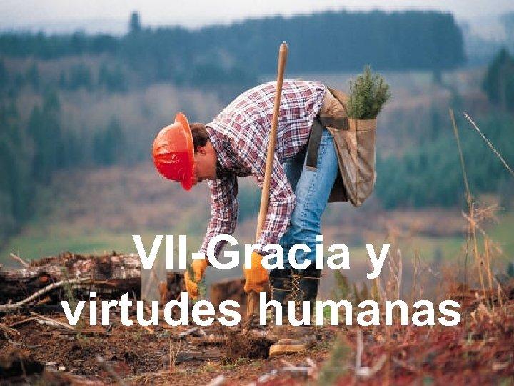 VII-Gracia y virtudes humanas