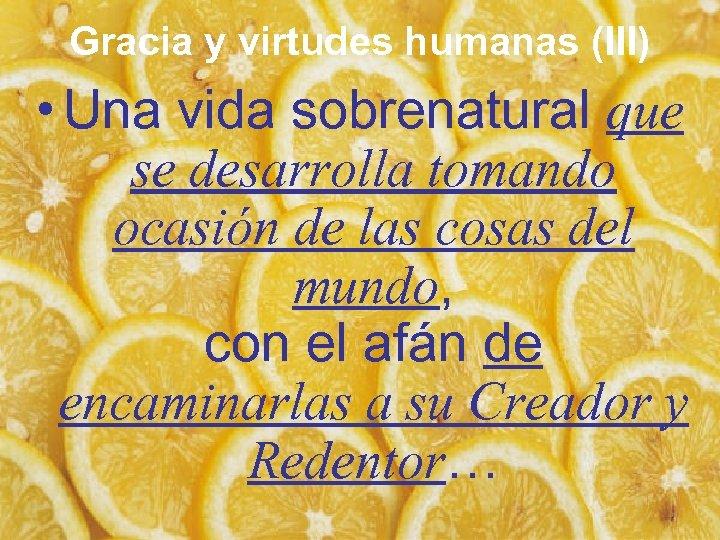 Gracia y virtudes humanas (III) • Una vida sobrenatural que se desarrolla tomando ocasión