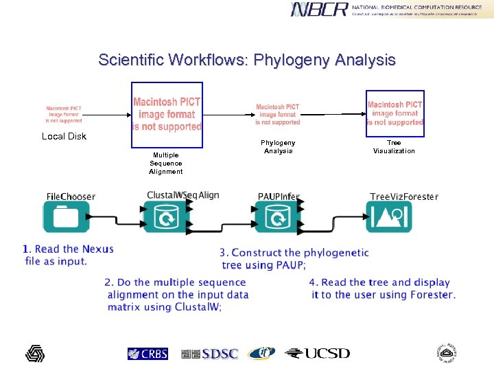 Scientific Workflows: Phylogeny Analysis Local Disk Multiple Sequence Alignment Phylogeny Analysis Tree Visualization