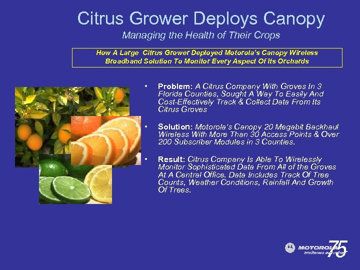 Citrus Grower Deploys Canopy Managing the Health of Their Crops How A Large Citrus