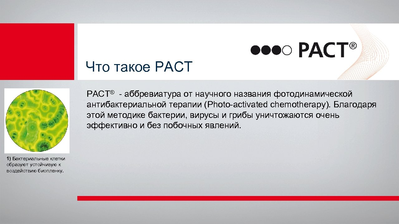 Что такое РАСТ PACT® - аббревиатура от научного названия фотодинамической антибактериальной терапии (Photo-activated chemotherapy).