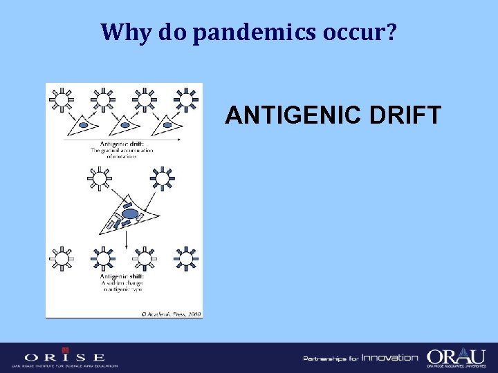 Why do pandemics occur? ANTIGENIC DRIFT