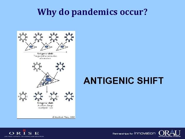Why do pandemics occur? ANTIGENIC SHIFT