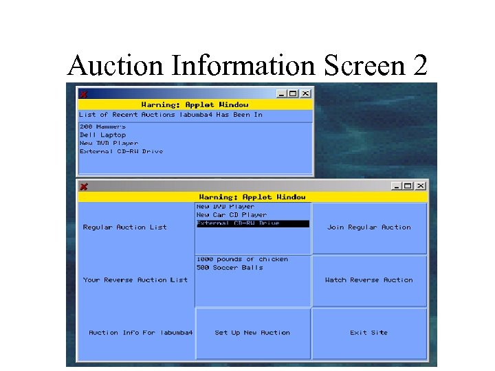 Auction Information Screen 2