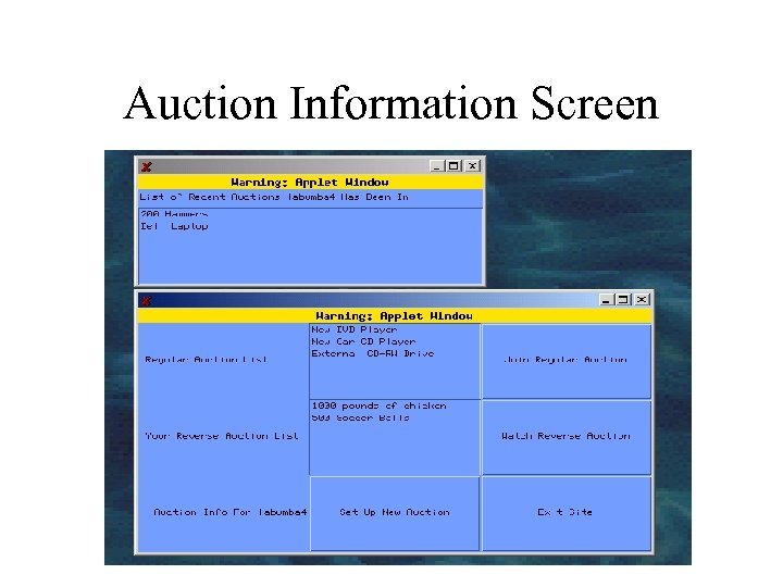Auction Information Screen