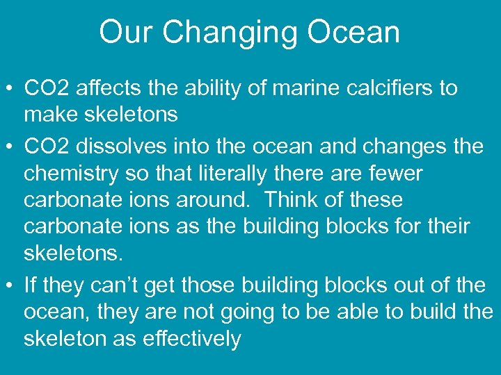 Our Changing Ocean • CO 2 affects the ability of marine calcifiers to make
