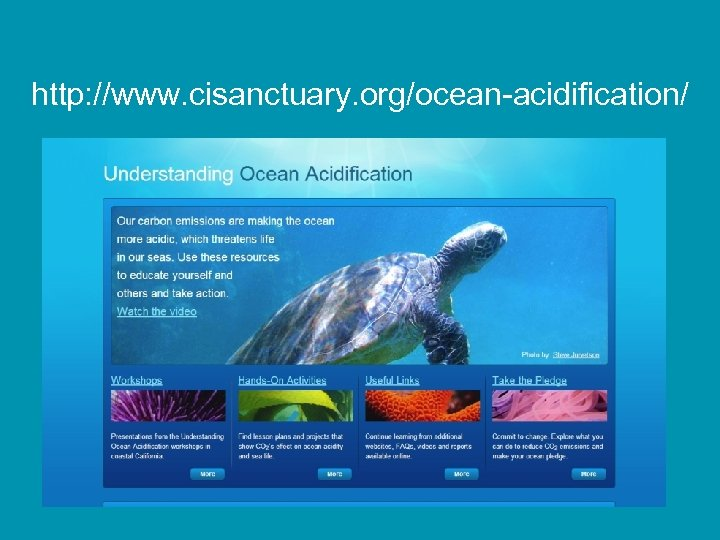 http: //www. cisanctuary. org/ocean-acidification/