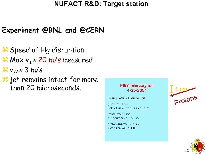 NUFACT R&D: Target station Experiment @BNL and @CERN z Speed of Hg disruption z