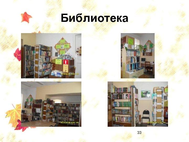 Библиотека 33