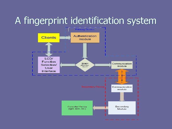 A fingerprint identification system