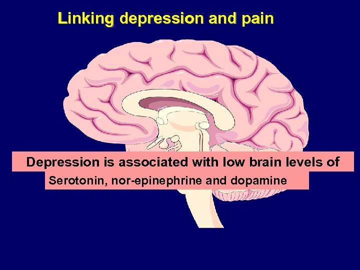 Linking depression and pain Depression is associated with low brain levels of monoamines Serotonin,