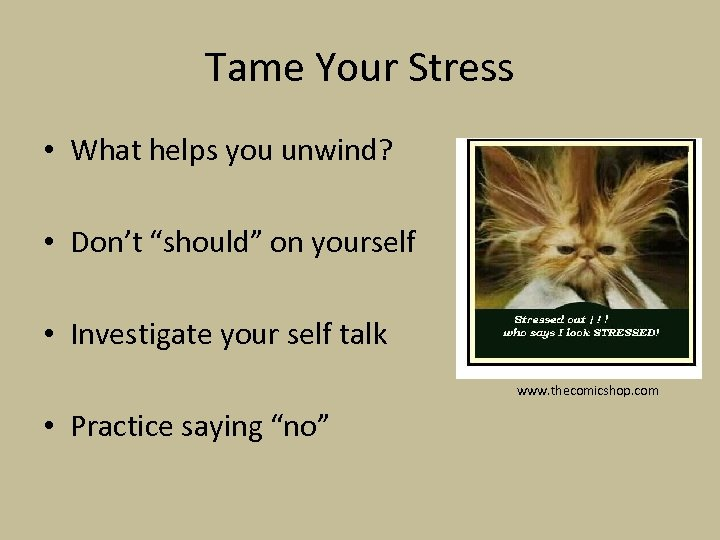"""Tame Your Stress • What helps you unwind? • Don't """"should"""" on yourself •"""