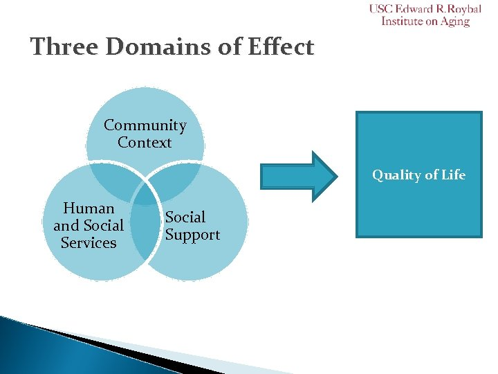 Three Domains of Effect Community Context Quality of Life Human and Social Services Social