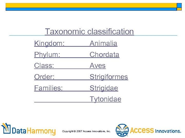 Taxonomic classification Kingdom: Animalia Phylum: Chordata Class: Aves Order: Strigiformes Families: Strigidae Tytonidae Copyright