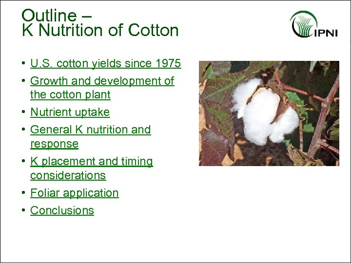Outline – K Nutrition of Cotton • U. S. cotton yields since 1975 •