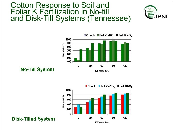 Cotton Response to Soil and Foliar K Fertilization in No-till and Disk-Till Systems (Tennessee)