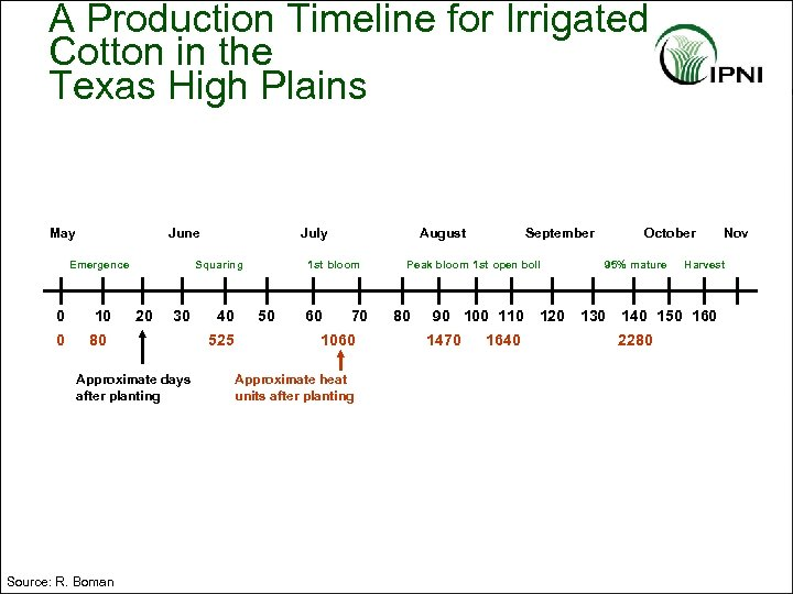 A Production Timeline for Irrigated Cotton in the Texas High Plains May June Emergence