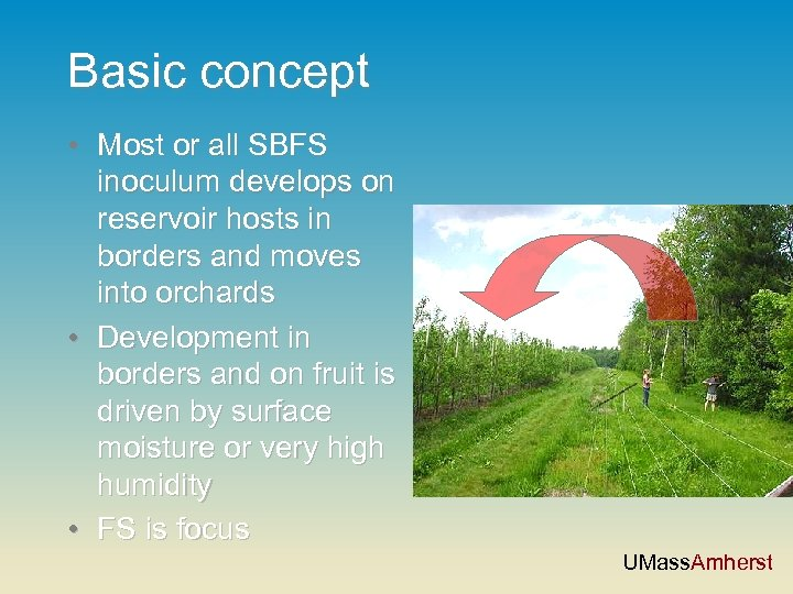 Basic concept • Most or all SBFS inoculum develops on reservoir hosts in borders