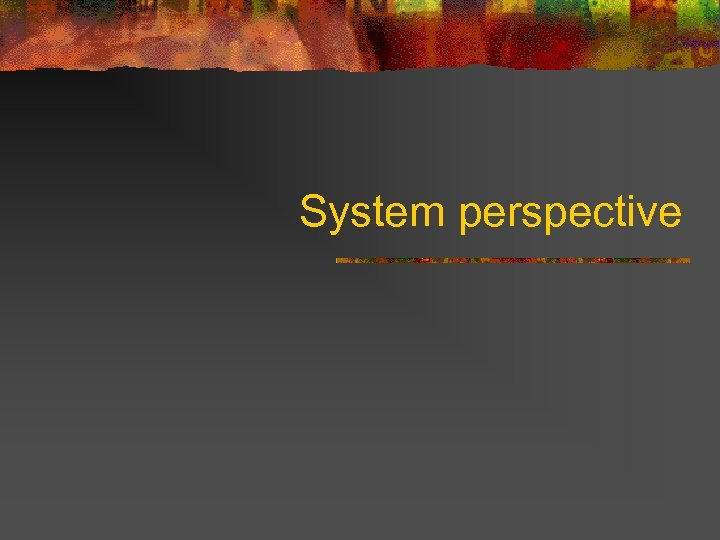 System perspective