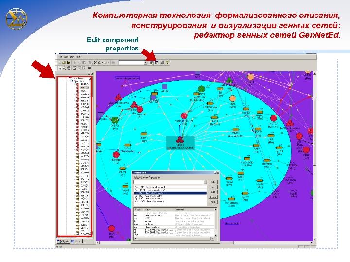 Компьютерная технология формализованного описания, конструирования и визуализации генных сетей: редактор генных сетей Gen. Net.