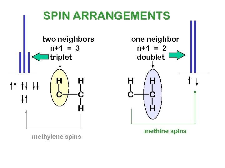 SPIN ARRANGEMENTS two neighbors n+1 = 3 triplet methylene spins one neighbor n+1 =