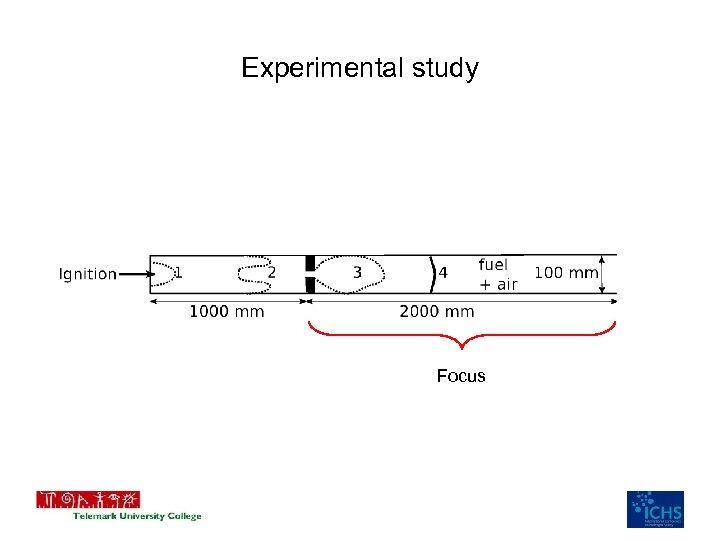 Experimental study Focus