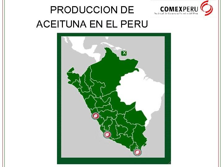 PRODUCCION DE ACEITUNA EN EL PERU
