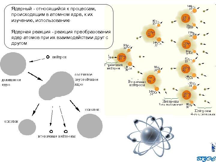 Ядерный относящийся к процессам, происходящим в атомном ядре, к их изучению, использованию Ядерная реакция