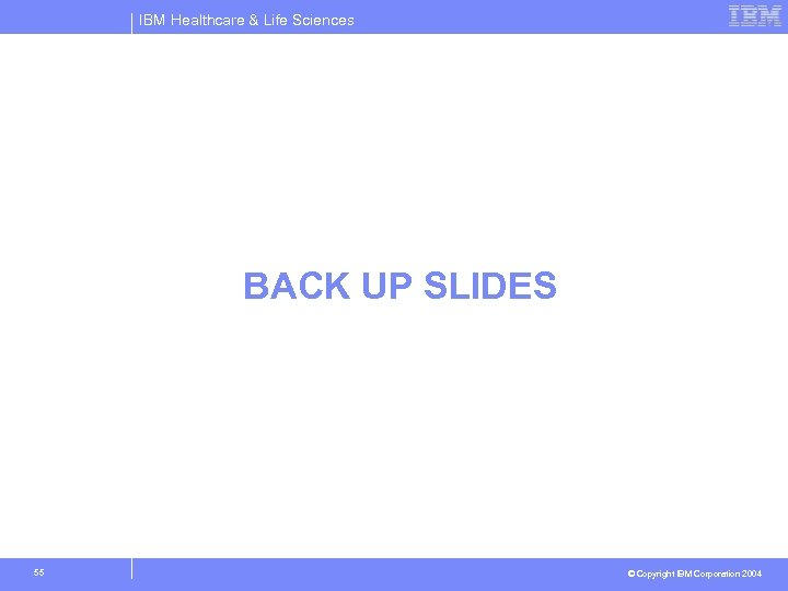 IBM Healthcare & Life Sciences BACK UP SLIDES 55 © Copyright IBM Corporation 2004