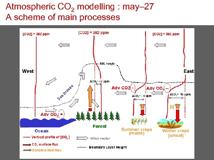 Atmospheric CO 2 modelling : may– 27 A scheme of main processes
