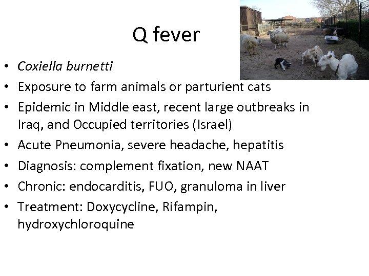 Q fever • Coxiella burnetti • Exposure to farm animals or parturient cats •
