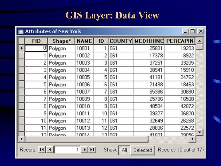 GIS Layer: Data View