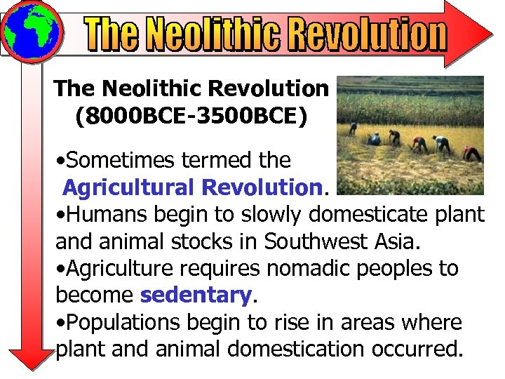The Neolithic Revolution (8000 BCE-3500 BCE) • Sometimes termed the Agricultural Revolution. • Humans