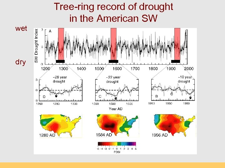 Tree-ring record of drought in the American SW wet dry
