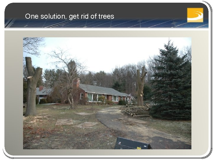 One solution, get rid of trees